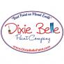 DIXIE BELLE METALLIC PAINT & TOP COAT